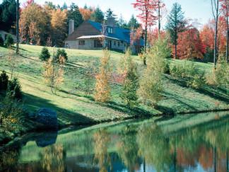 006 Mountain Residence Landscape.jpg