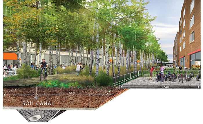 026 Low2No Master Plan Landscape Renderi