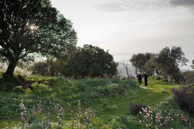 027 Aegean Residence Site.jpg