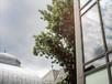011 Westmount Public Library Exterior.jp