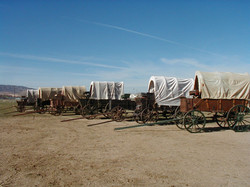 COVERED WAGONS !
