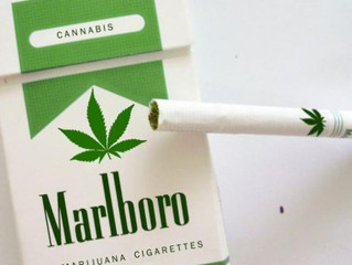 In the United States began to sell Marlboro cigarettes with marijuana