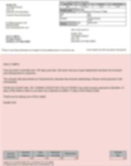 BillFlash Info Services Inc.