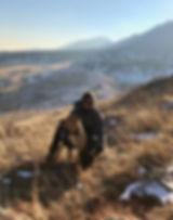 Doggies 2.jpg