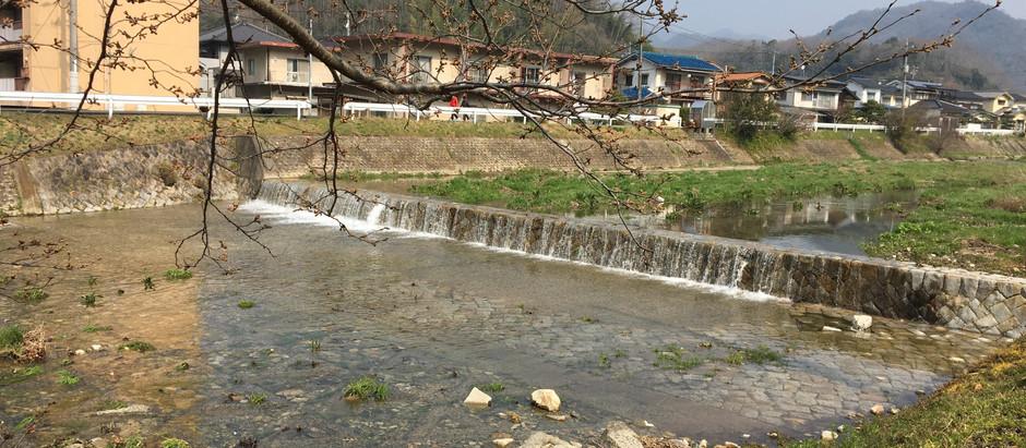 水が流れる 和久原川