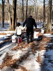 Norah Papa Walking.jpg