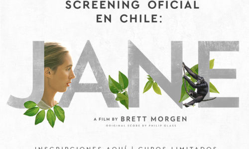 "ASISTE AL SCREENING OFICIAL DEL DOCUMENTAL ""JANE"""