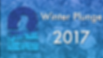 Winter Plunge 2017.png
