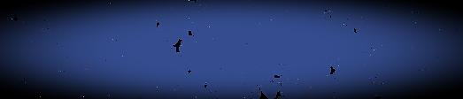 B2_darkblue-01_edited_edited.png