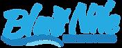 Blue Nile Logo-main cropped.png
