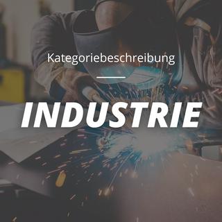 Kategoriebeschreibung Industrie.png
