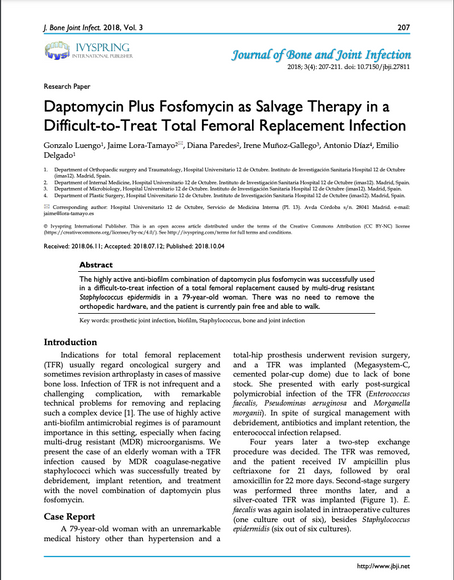Daptomycin Plus Fosfomycin as Salvage Therapy in a  Difficult-to-Treat Total Femoral Replace