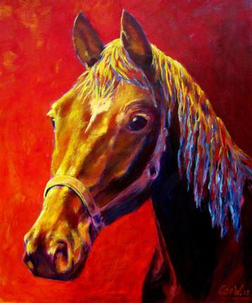 Zomaar een paard