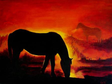 Paarden in ochtendnevel