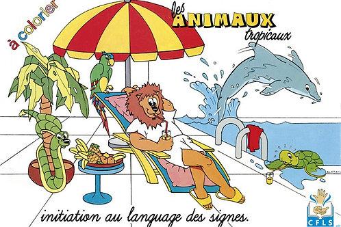 Les animaux tropicaux