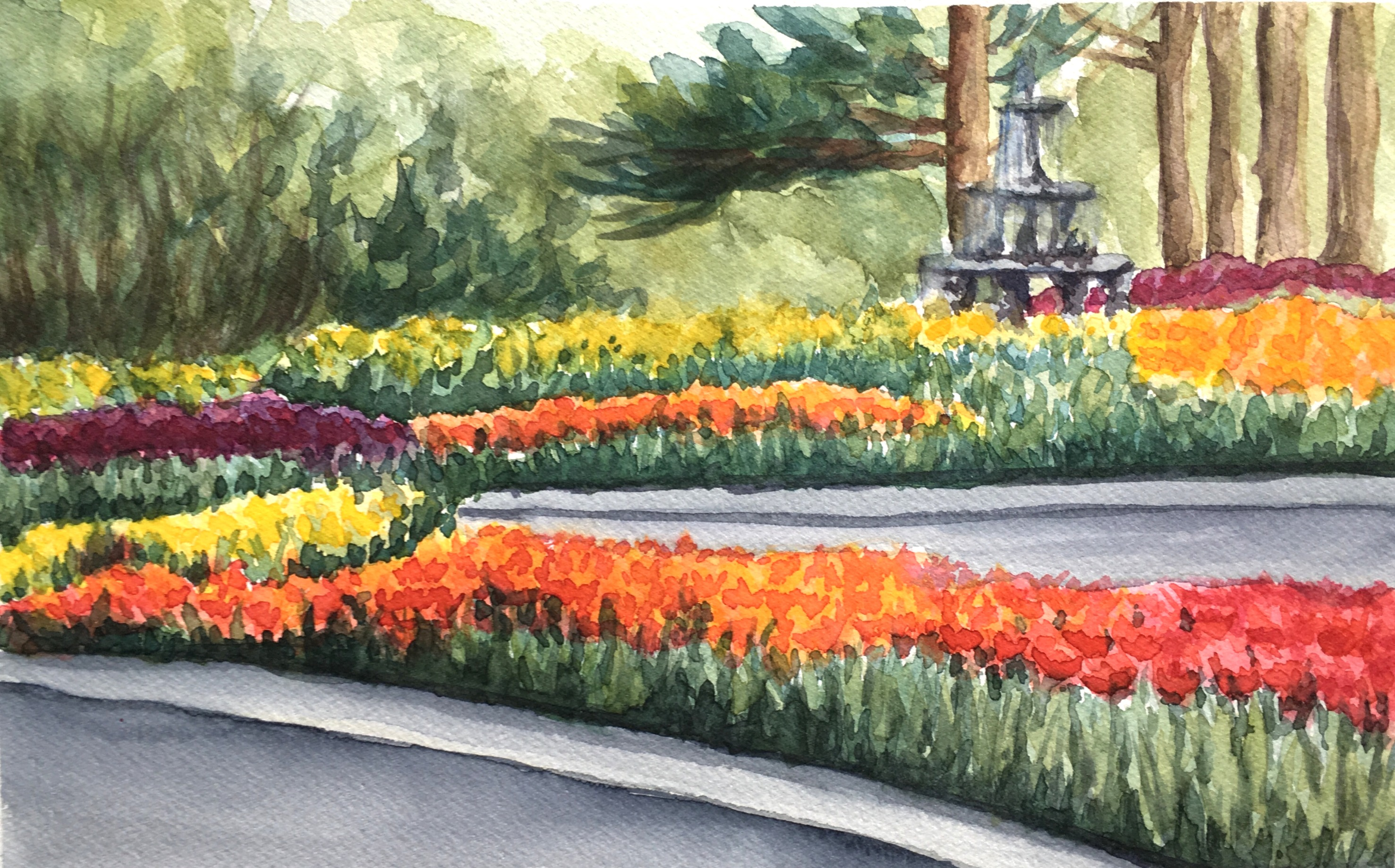 """Tulips study"""
