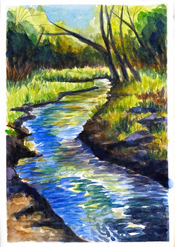 """Purgatory Creek in Spring"""