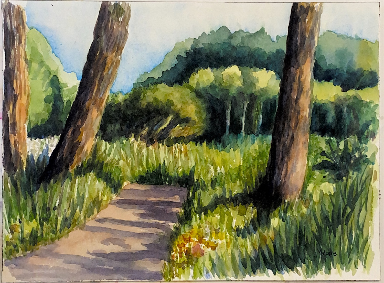 """Minnetonka Woods"" Plein Air"