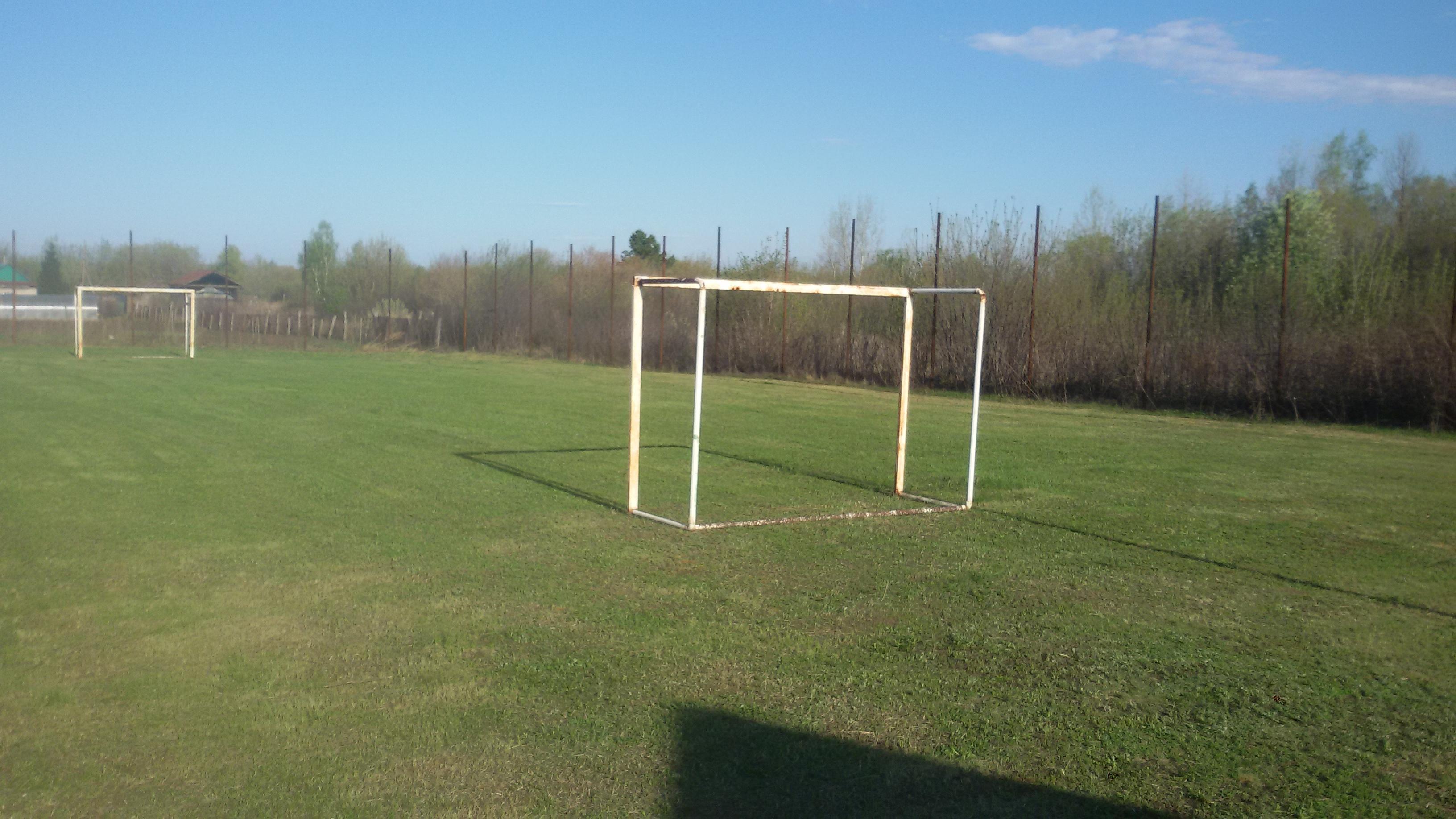 Футбольное поле в Выползово