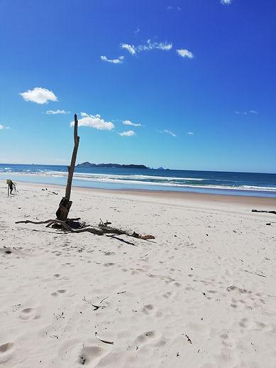 Opoutere beach 2.jpg