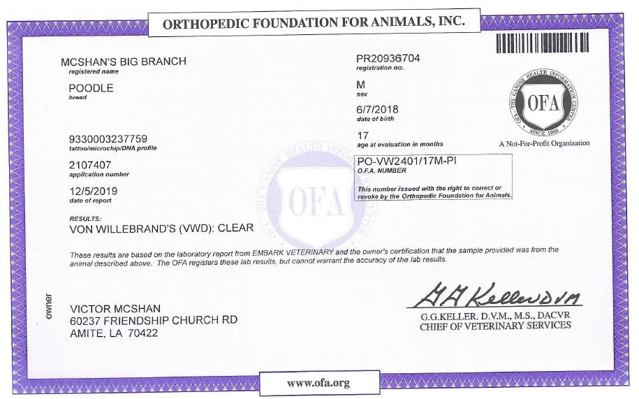 Twiggy OFA Certificate VWD.jpg