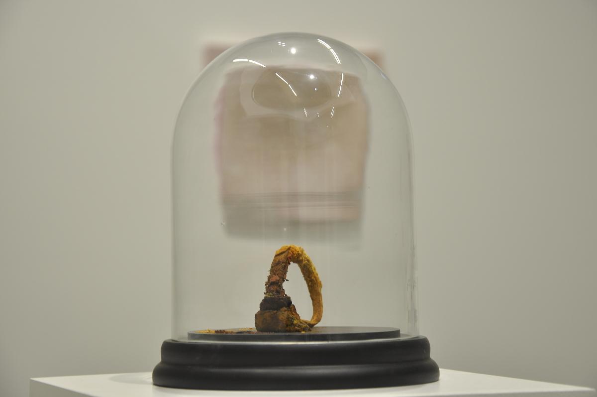 Ausstellungsansichten Schichtung PORT25_19.JPG