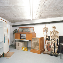 Osteologie 20x20 neu