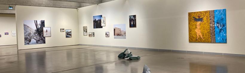 Ausstellungsansichten Deltabeben Regiona