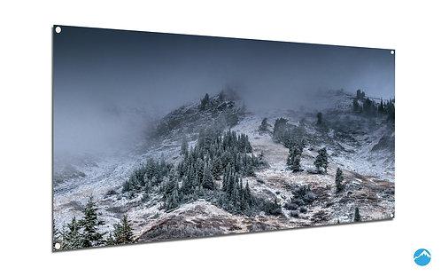 Snowfall Wald