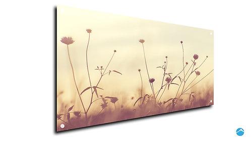 Blumen Lumia