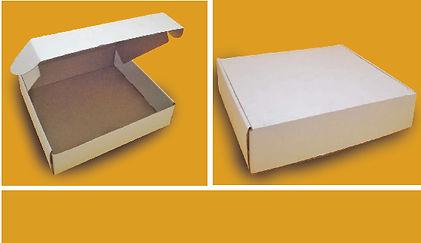 caja microcorrugada blanca detalle.jpg
