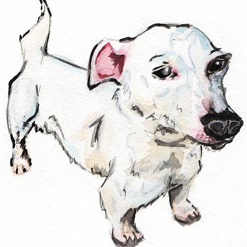 Commission - Pet Portrait