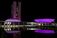 agencia-senado-outubro-rosa-congresso-nacional-1500-02102020101502702.jpeg