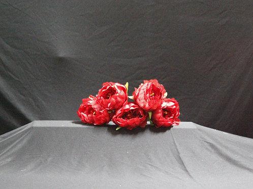Peony flower (red)