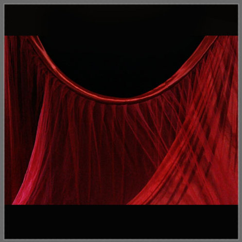 Red Cloth Curtain with Mesh