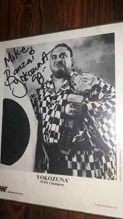 Yokuzuna WWF Title Promo