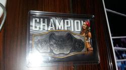 Nikki Bella Belt Plate