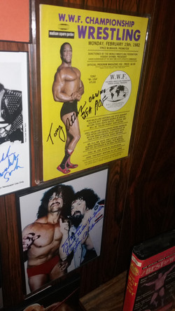 WWF Display Part 2