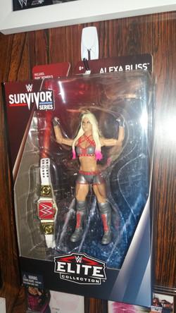 Survivor Series Elite Figure