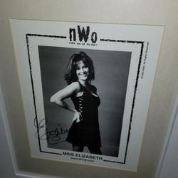 Elizabeth signed NWO photo