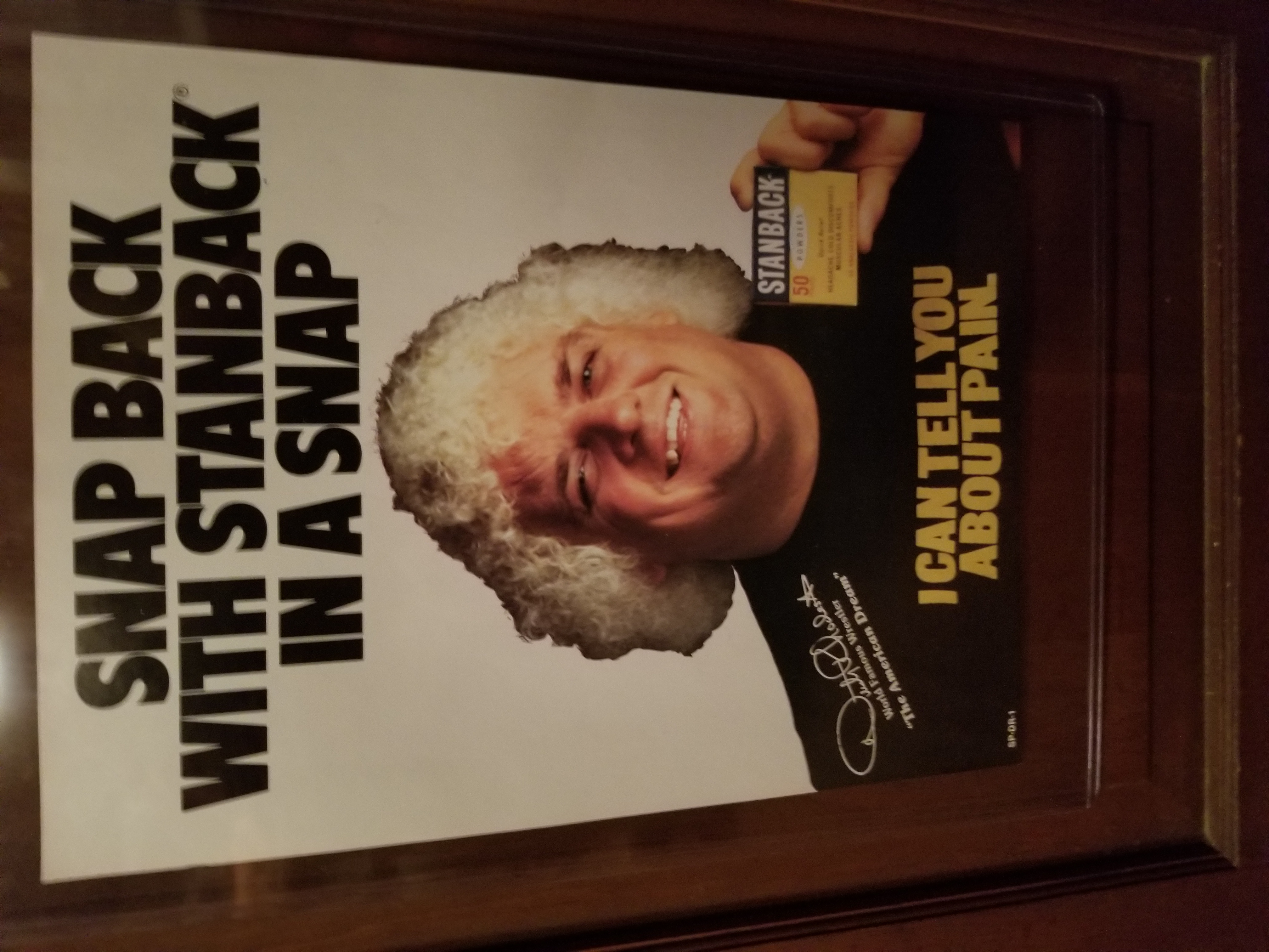Dusty Rhodes Stanback Poster