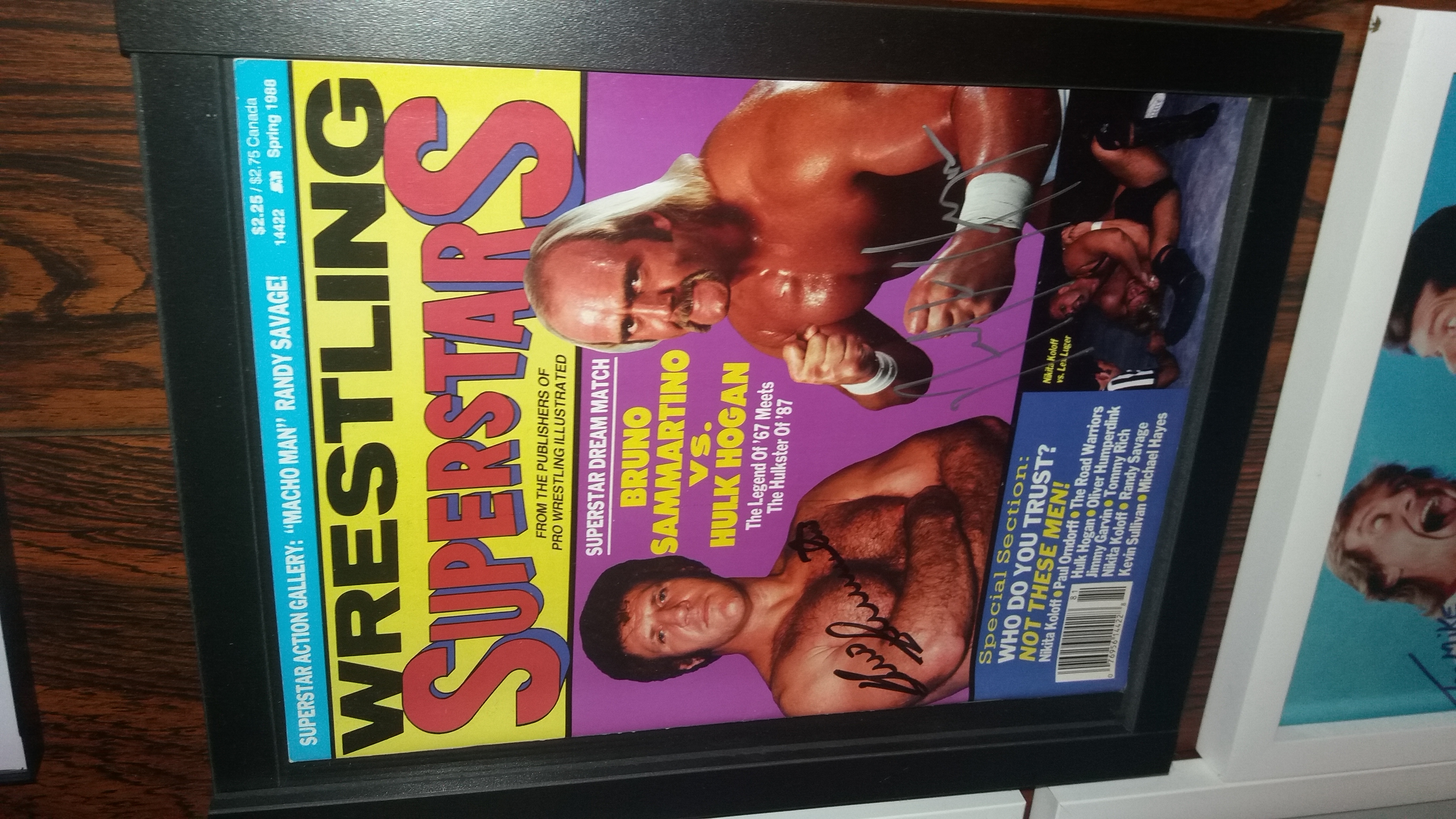 Wrestling Superstars Spring 1988