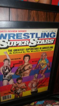 Wrestling Superstars Spring 1981
