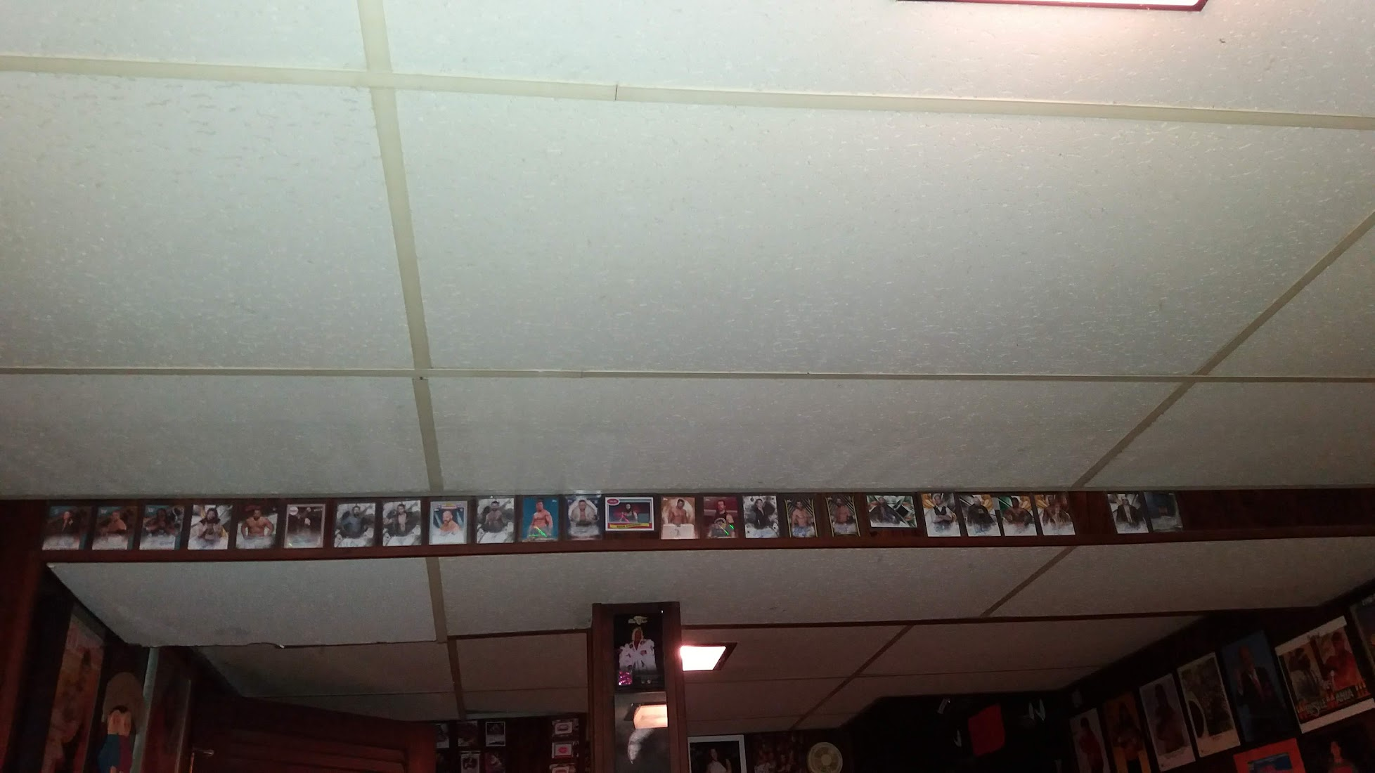 Signed Trading Cards Area.