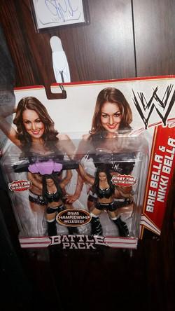Bella Twins Battle Back