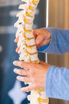 Somatics for Back Pain
