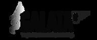 logo-galata.png