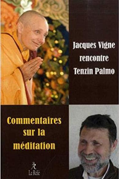 Tenzin Palmo : commentaires sur la méditation