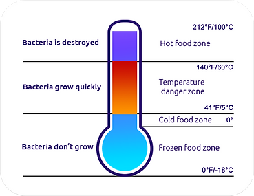 Food-Safety-Temperature-by-digi-thermo.p