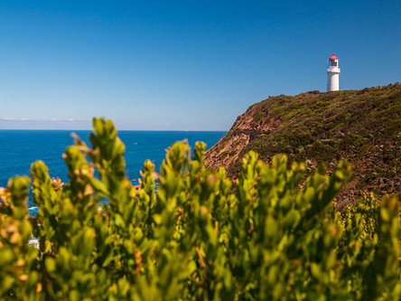 Cape Schanck Lighthouse Reserve - Part II